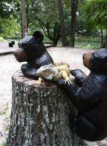 Help! Bears!